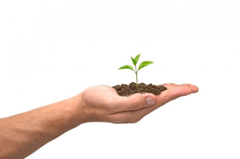 comment faire grandir son entreprise